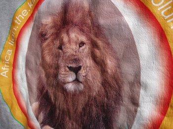 ライオン拡大